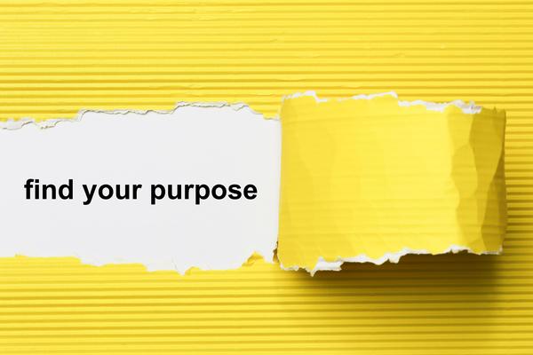 van purpose naar praktijk